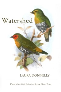 Watershed, by Laura Donnelly